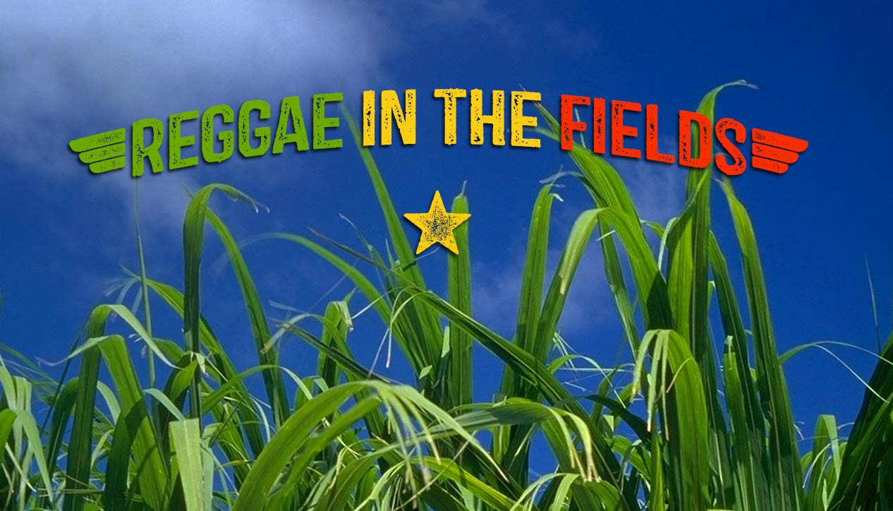 Reggae In The Fields